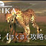 【攻略】AFRIKA【実況】#13 BIG GAMEのバーゲンセール