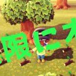 必見【あつまれどうぶつの森】無限に木を集められる裏技