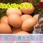 【裏ワザ】卵の保存方法!