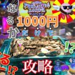 【メダルゲーム】しょくさんと1000円攻略!新規店舗で協力して増やそうとしたら超カオスだったwww【初コラボ】〜中編〜