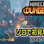 【マインクラフトダンジョンズ】ソロで初見攻略していく!!!【ゲーム実況】【Minecraft Dungeons】part1
