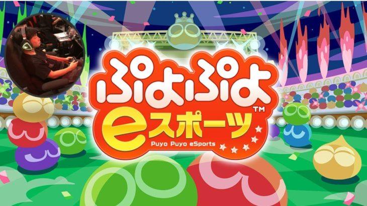 [live 20.6.11] vs ゆうりん 30先!【ぷよぷよeスポーツ puyopuyo champions】