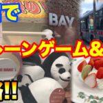 【函館日帰り旅】クレーンゲーム&観光!! 押しでぬいぐるみ攻略!! UFOキャッチャー