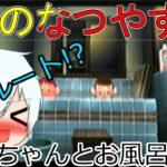 【ノルマリ】ぼくのなつやすみ 21日目【ゲーム実況】