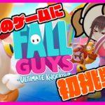 【Fall Guys/フォールガイズ】旬なゲームでみんなと遊ぼ!!!!!!!【初見プレイ / ゲーム実況】八重沢なとり VTuber