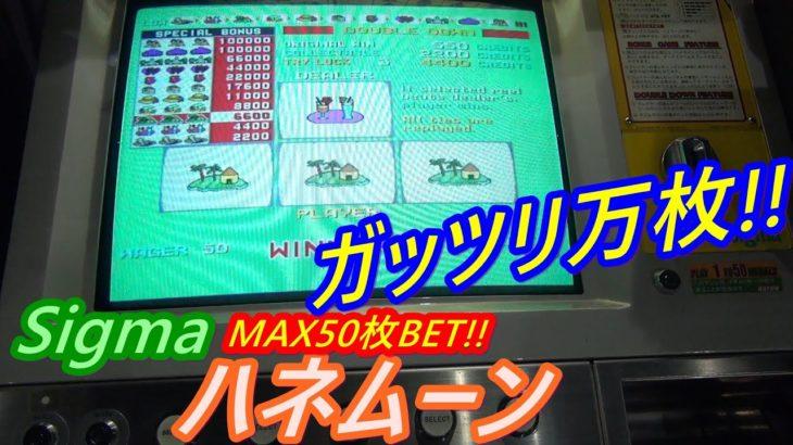 【メダルゲーム】シングルマシンの聖地だからできる裏技炸裂!! ガッツリ万枚!!(2020.09.19)