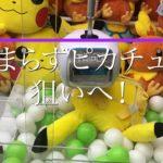 ポケモン・クレーンゲーム【裏技求む・ピカチュウ・アチャモ】