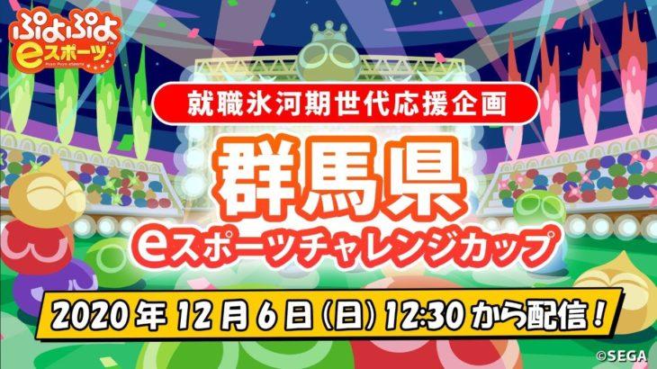【就職氷河期世代応援企画】群馬県eスポーツチャレンジカップ
