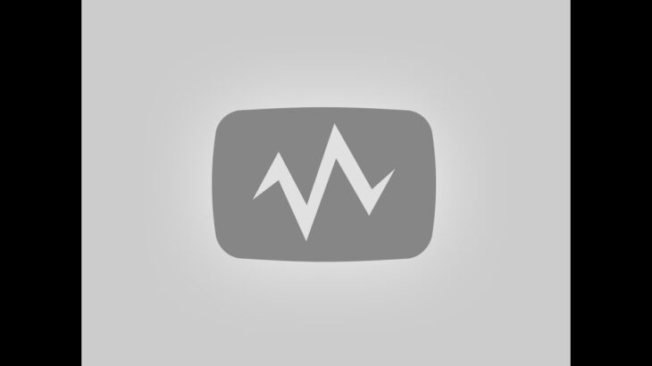 モラリオンのゲーム実況 APEX