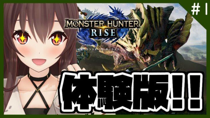 【モンスターハンターライズ DEMO】いざ!新たなモンスターハンターの世界へ!!!!【初見プレイ/ゲーム実況】八重沢なとり VTuber