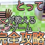 【攻略解説】完全攻略!?とってき屋店長が教えるクレーンゲーム!【教えて、せっきー】 #クレーンゲーム専門店エブリデイ