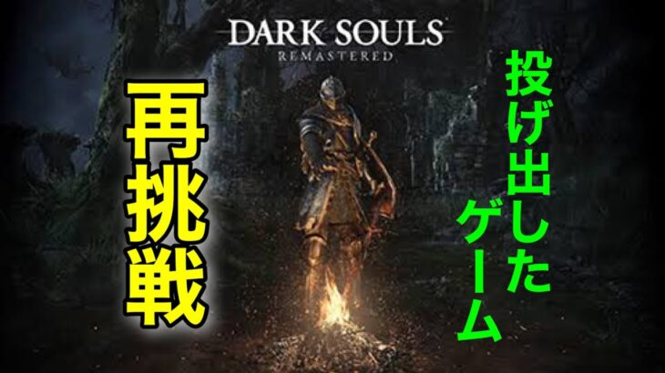 [DARK SOULS]new gameで攻略再開