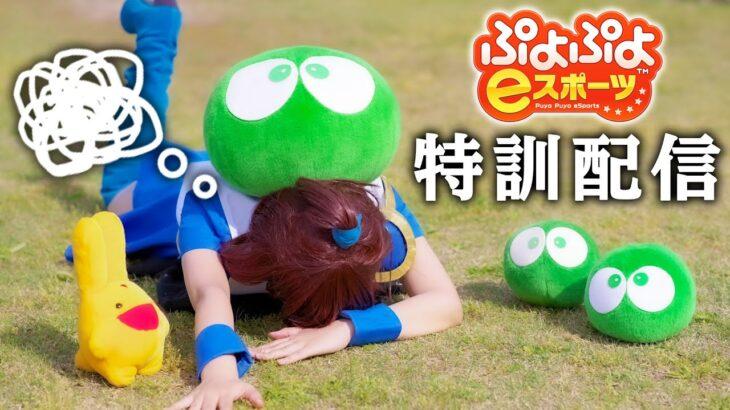 【参加型】気軽に対戦モード #04【ぷよぷよeスポーツ】
