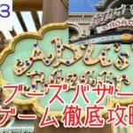 【TDS】アブーズバザールの新ボールゲームチャレンジ徹底攻略!