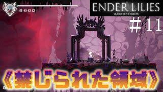 【ENDER LILIES】禁じられた領域がヤバ過ぎる【ゲーム実況攻略part11】